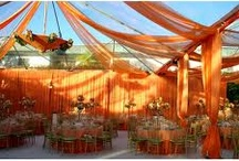 Tent: Orange Inspiration / This Board is about tents with orange used as an accent color. Orange can be a harvest color when used with brown and burgundy or as a bright summer color when used with white, yellow, pink and lime. It is a very versatile color and pops in tent  events.