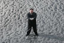 Ai Weiwei (Ай Вейвей), Немецкий павильон