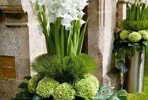 Rastlinná dekorácia