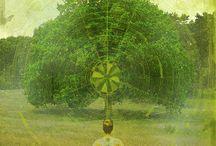 Healing, Pagan & Spiritual guides and totems