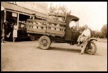 Wilton History Group / Local pictures and posts focused on the history of Wilton, CA.