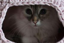 crochet catnest