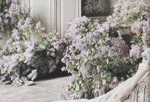 Лестница цветы