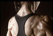 back workout