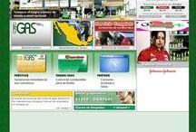 Corpogas / http://www.corpogas.com/ Destacado del proyecto: Planeación de sistemas modulares de administradores, para noticias y precios de gasolina. Desarrollado con .ASP Flash y HTML