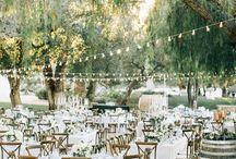 Steininger wedding