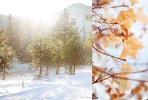seasons / by Aran Goyoaga