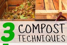 Homestead: Compost