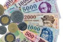 Investment in Central Europe / Multinational company is seeking cooperation partners