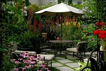☆ Gardens&Courtyards  / Live in your backyard!