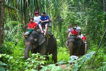 Thailand / things to do