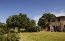 Tuscany, Italy / Villas by Hosted Villas  / by Hosted Villas - authentic villa vacations
