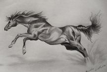 Graphite drawings - Animals / My graphite drawings about animals,and their movement. I love drawing movements of the animals..