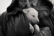 hombre y su cachorro