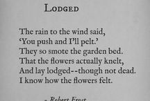 Robert Frost, Emily Dickinson and others / Quotes and poems from some of my favorite poets