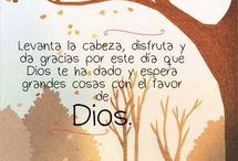 frases chicas