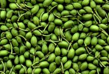 Nos beaux  ingrédients / Nous utilisons pour la confection de nos recettes des herbes, fruits et légumes frais et de qualité.