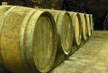 Cave des producteurs de Vouvray / Visite du vignoble et des chais de la Cave de producteurs de Vouvray en Loire  Réservez avec winetourbooking.com