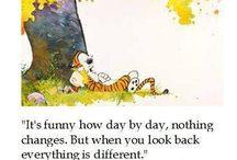 Humor - Calvin and Hobbes