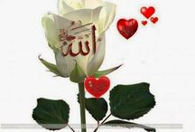 beautiful islamic pics