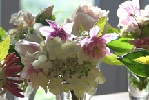 Arranging with Country Flowers
