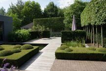 Grădini moderne