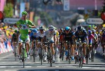 Tour De France 2013 / 100th Tour de France