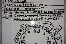 Schedule, Organization