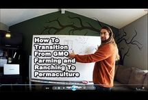 Our Videos / Permaculture Video Tips, How To's, Site Tours, Travel, Permaculture Farms, Urban Sites, Gardens