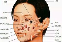refelexológiai pontok, arc, talp, tenyér, orr