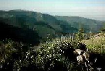Sugarloaf Mountain = Boulder, CO / Ned / #The #Loaf  / by David Heath