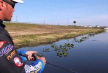 <pesca