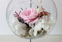 Flori crio