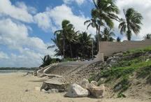 Visitors of Cabarete Beach Houses