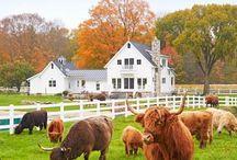 farmház