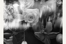 Black & White Photography / HMxAA favorite black & white photography www.hmxaa.com/shop/