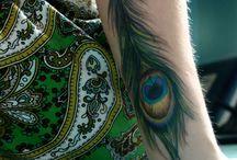 peacock pena pavão