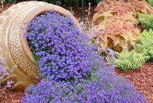 fantasia floreale e riciclo