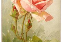 Catherine Klein (1861 - 1929 ) artista das flores! Delicadeza e beleza nas pinturas...