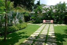 Garden&outside