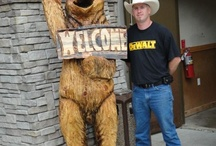 Bear Carvings / Carvings by Jason Morton with Eagle Ridge Chainsaw Carvings. Located in Springfield, Missouri! Check out our website at www.eagleridgesawworks.com or visit us on Facebook at www.facebook.com/eagleridgechainsawcarvings  We are sponsored by Crader Distributing, STIHL Distributor http://www.cdcbmestihl.com/