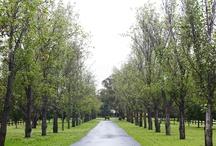 Darley Woodlands Homestead