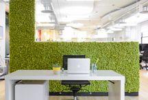 stabilize Duvarlar / Her yer doğal bahçe olsun.