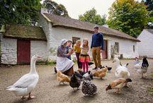 Activités en Famille / Découvrez nos séjours en famille en Ecosse : http://www.vacances-ecosse.fr/-sejour-en-famille- et au Pays de Galles : http://www.vacances-paysdegalles.fr/-FAMILLE-.html