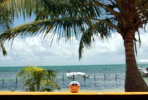 Paradise on Caye Caulker, Belize / The beautiful island of Caye Caulker offers the perfect surrounding for pure relaxation... clear water, palm trees, no cars, small restaurants and bars and many colors.