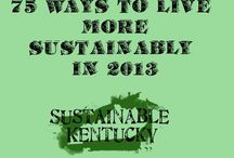 sustainable homesteading / by Dawn Renslow