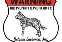 Belgian Laekenois Signs and Pictures / Warning and Caution Belgian Laekenois Signs. https://www.signswithanattitude.com/belgian-laekenois-signs.html