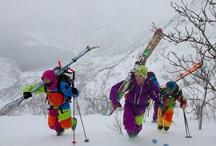 Vinter og ski