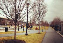 Parks & Squares