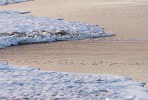 Beaches and Coastal Living / by Linda Rowan